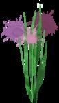 Violette-s_Garden_Simplette_el (25).png