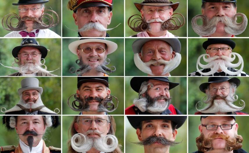Конкурс усов и бород во Франции
