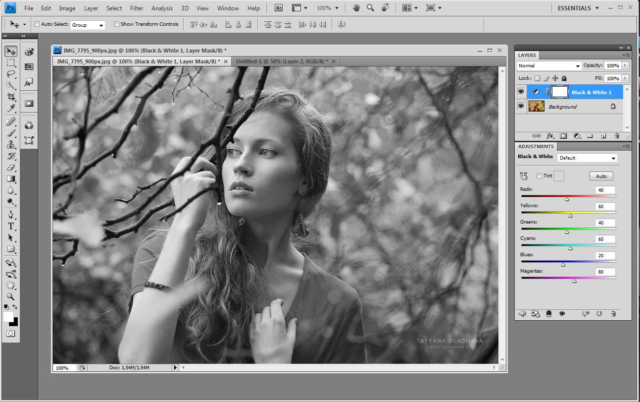 Как сделать черно белое фото в xnview