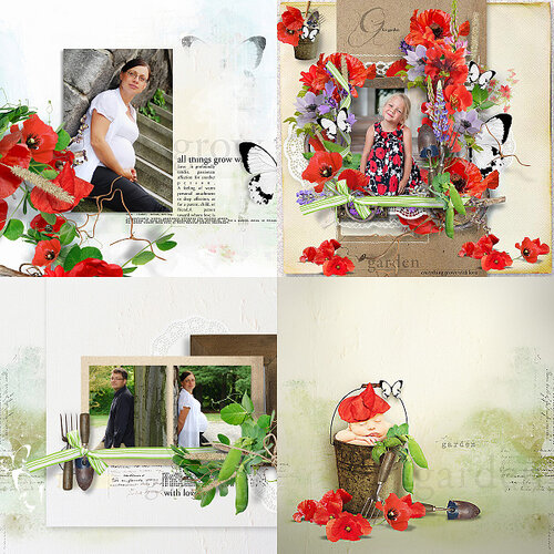 «In My Garden» 0_95bbc_2e4a542e_L