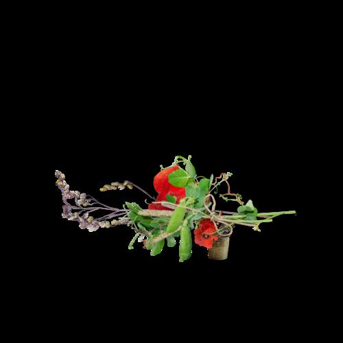 «In My Garden» 0_95ca4_6239658c_L