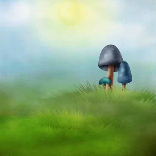 «Adventure in Wonderland» 0_95fc9_8698d021_L