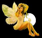 Fairy_Fair_by_Irene_LR-07-14-09.p_.png