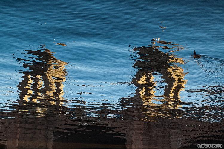 Старо-Калинкин мост (отражение, Старо-Калинкин мост, утка, Фонтанка)