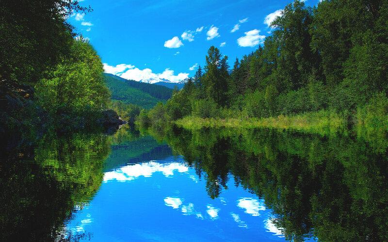 Для того чтобы скачать картинку 344100 - Природа, река, лес, лето