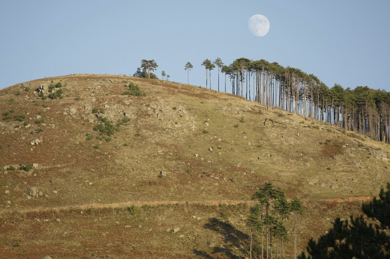 Луна над горой