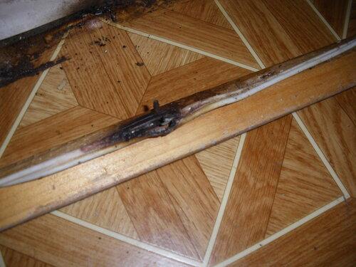 Фото 10. Повреждённый (аварийный) участок условно-стационарной проводки. Провод вынут из угла между полом и стеной - можно проводить восстановительные работы.