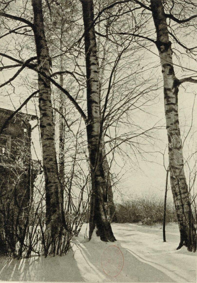 Дом-музей П.И.Чайковского. Парк