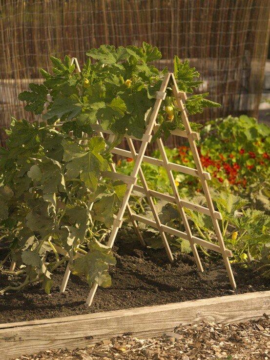 Интересные идеи для сада своими руками с фото