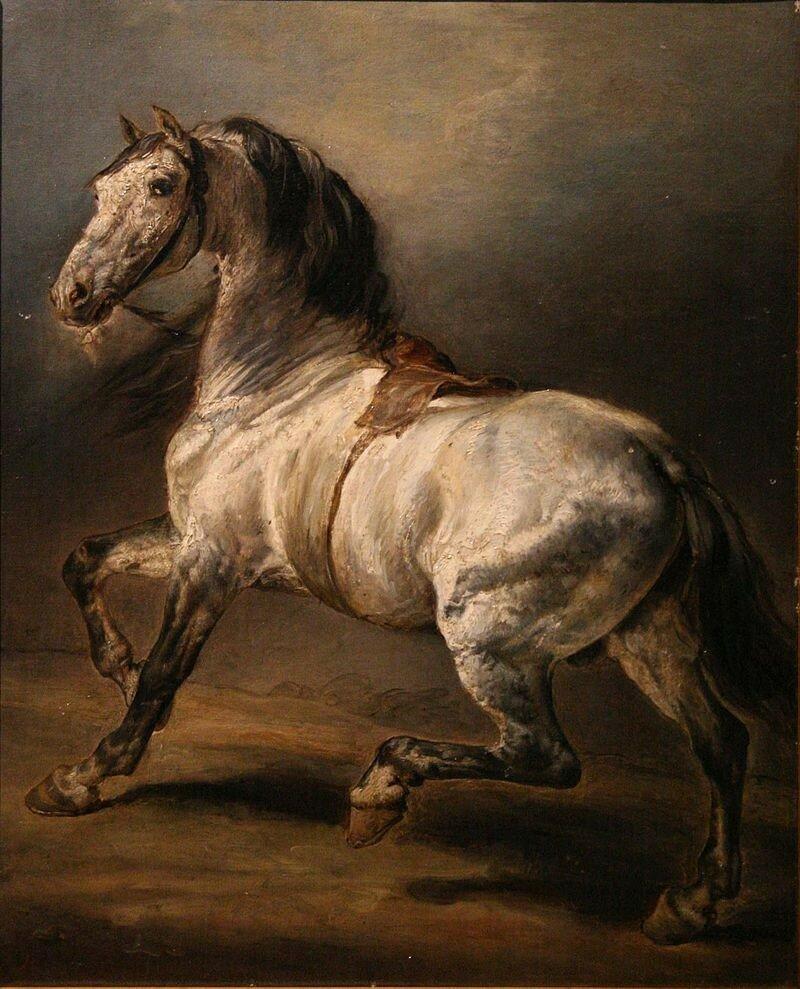 Géricault-étude_de_cheval_gris.jpg