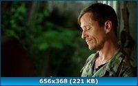 Драконовые осы / Dragon Wasps (2012) DVDRip
