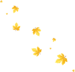RR_HoneyBee_Element (43).png