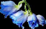 ldavi-shadowedflowers-delphinium10.png