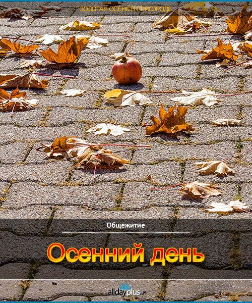 Осенний день.