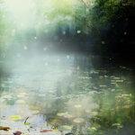 ldavi-scenesfms-summer-10b.jpg