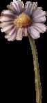 ldavi-fallingleavesautumntea-paintedflower1.png