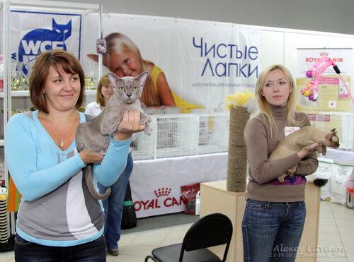 http://img-fotki.yandex.ru/get/6520/135140311.41/0_94623_9278af3f_L.jpg