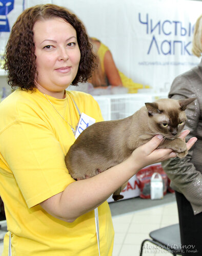 http://img-fotki.yandex.ru/get/6520/135140311.41/0_94628_149f9942_L.jpg