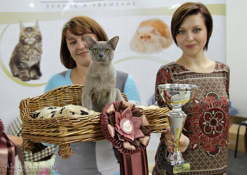 http://img-fotki.yandex.ru/get/6520/135140311.42/0_94631_842940f0_L.jpg