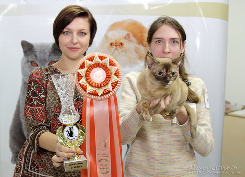http://img-fotki.yandex.ru/get/6520/135140311.42/0_9463b_d04b76c9_L.jpg