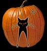 Черная кошка и чужой праздник. Получи подарки!