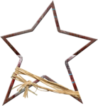 sd_utach_star-large.png