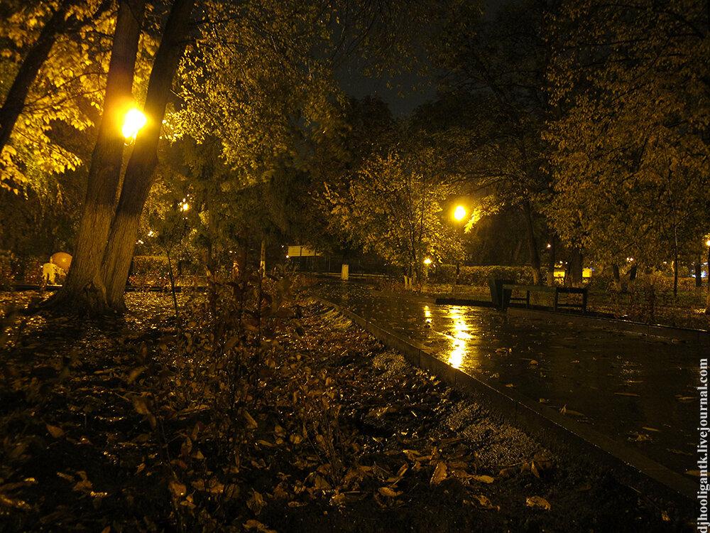 Фото ночи и дождя