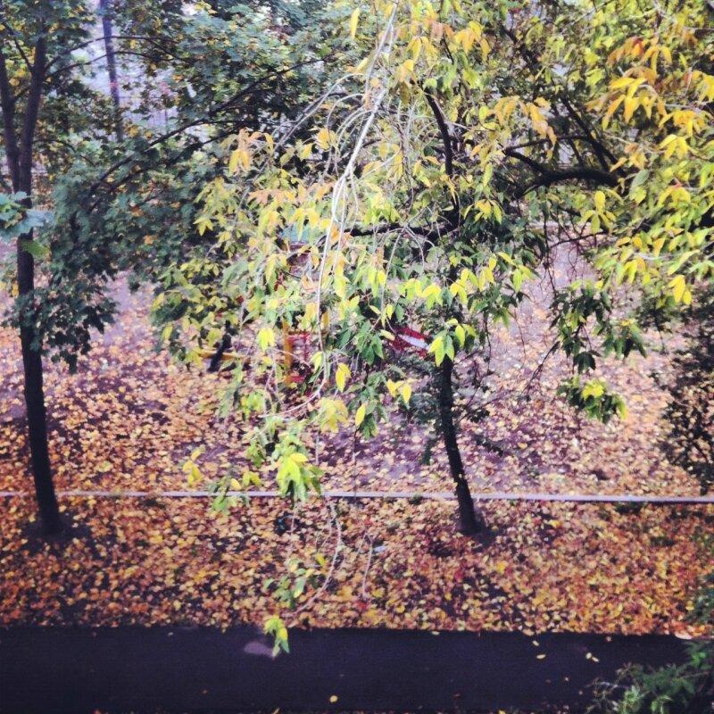Вид с балкона 24 сентября