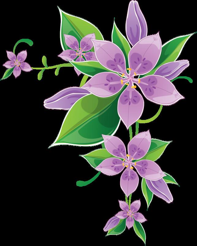 Угловые цветы картинки 5