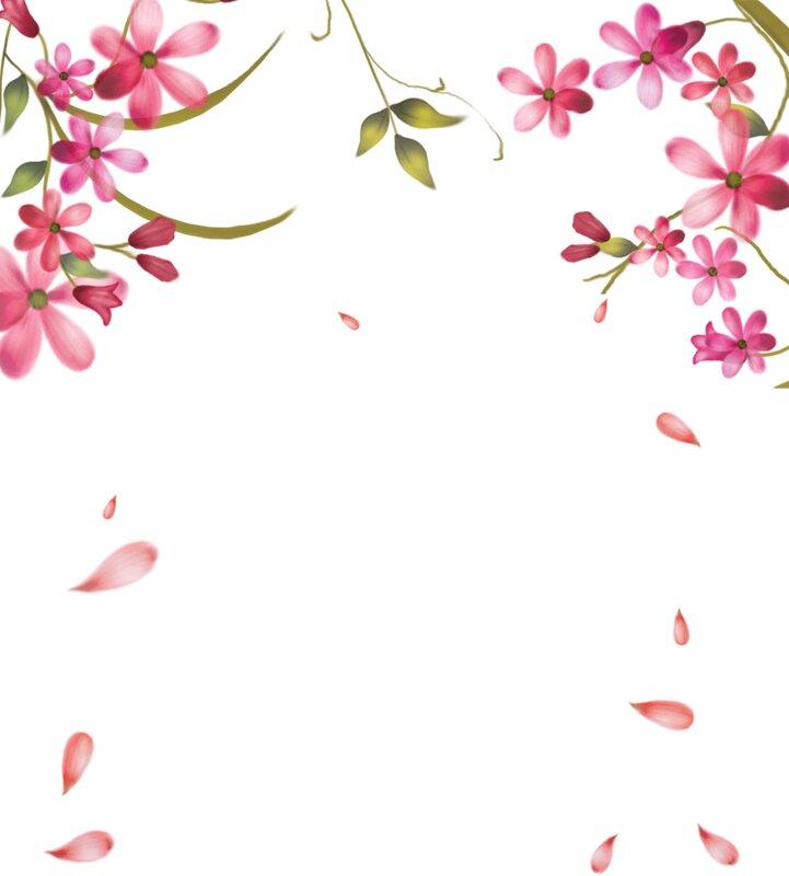 Угловые цветы картинки 1