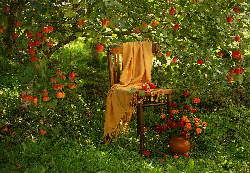 В чудесном саду