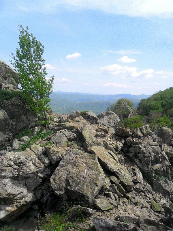 На высоте, камни ... SAM_6746.JPG
