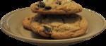 hollydesigns_ttnbc-plateofcookies1.png
