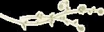 vjs-inthestillness-flourish-01.png