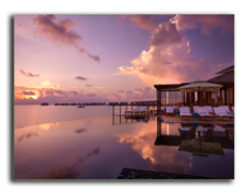 Мальдивы. Viceroy Maldives 5*. Infinity Pool