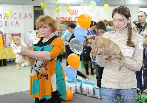 http://img-fotki.yandex.ru/get/6521/135140311.42/0_9463a_18d02482_L.jpg