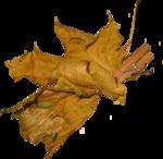 Autumn by Anna- Jolanta(98).png