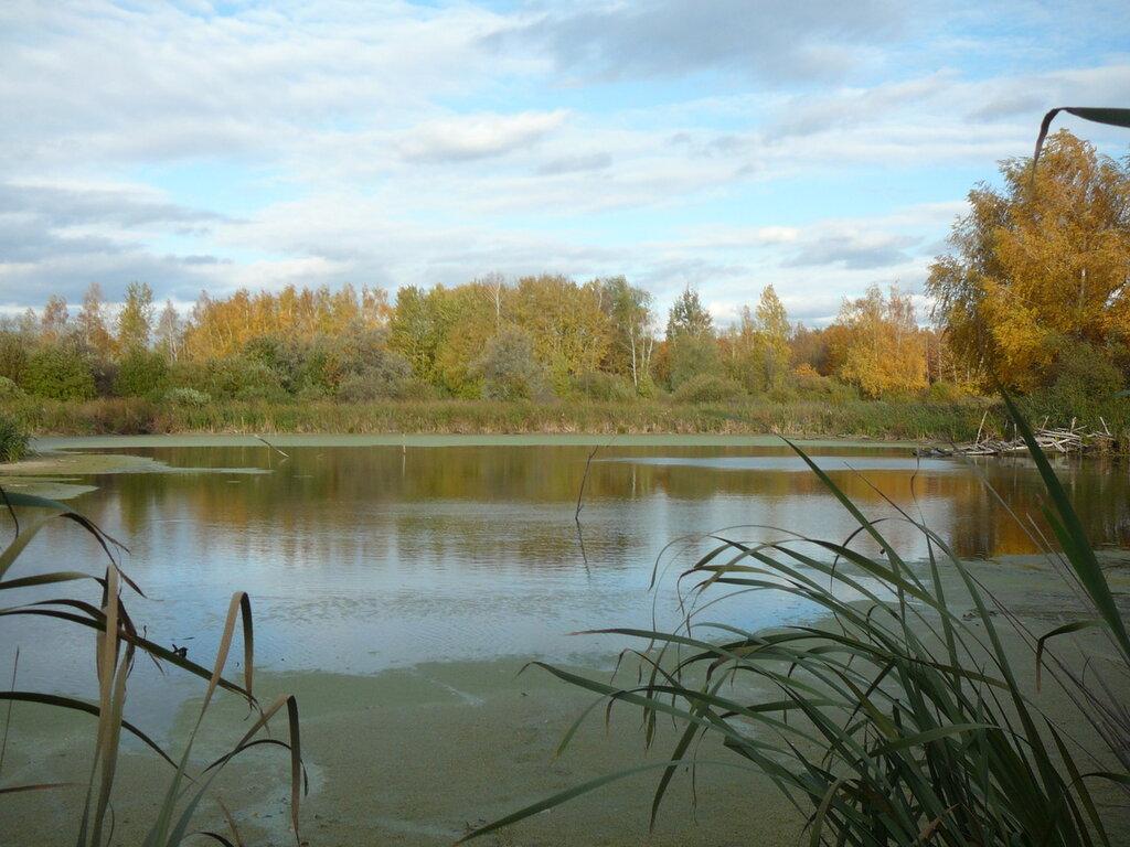 Сайт охотников и рыболовов саратовской области