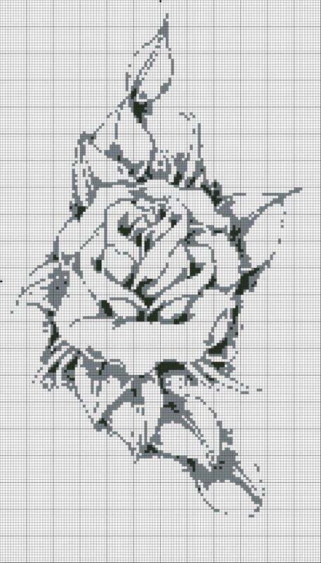 Монохромные картинки цветов 5