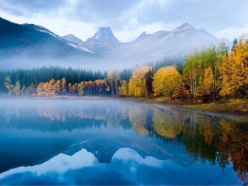 The Landscape...