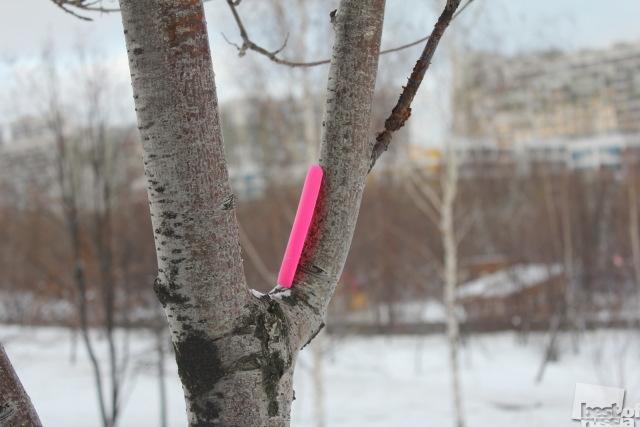 Розовая штучка