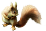 ldavi-scenesfms-squirrel1b-lighter.png