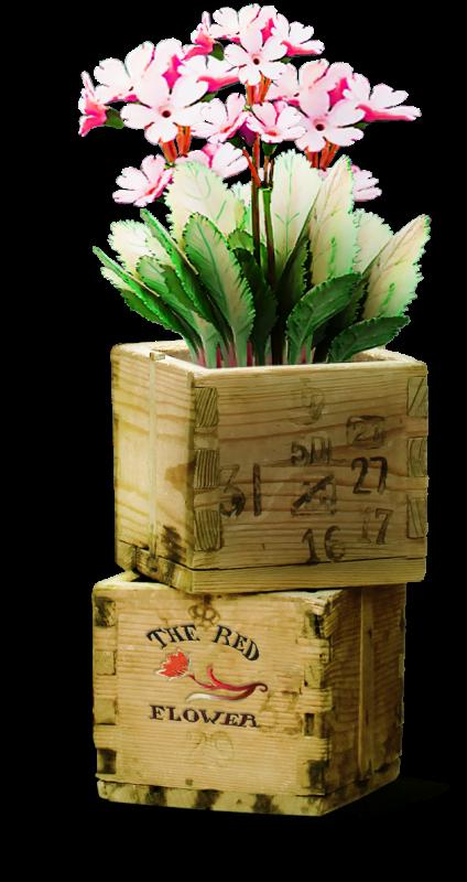 ldavi-bunnyflowershop-flowerboxes3c.png