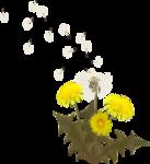 RD_SummerBreeze_flower2.png