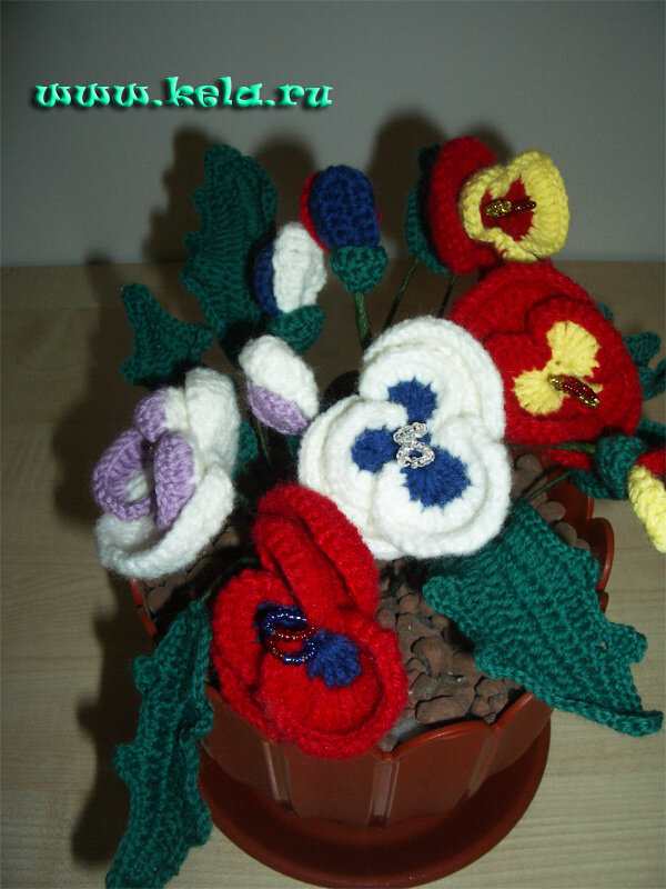 цветы в горшках - Самое интересное в блогах - LiveInternet.Ru.