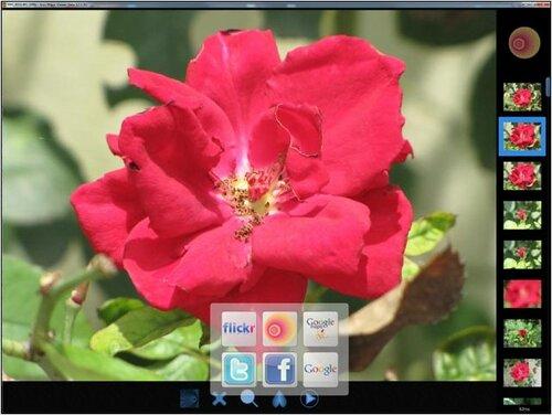 росмотр цифровых изображений без искажений