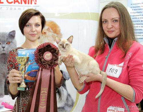 http://img-fotki.yandex.ru/get/6522/135140311.42/0_9462e_a8ae9ed1_L.jpg