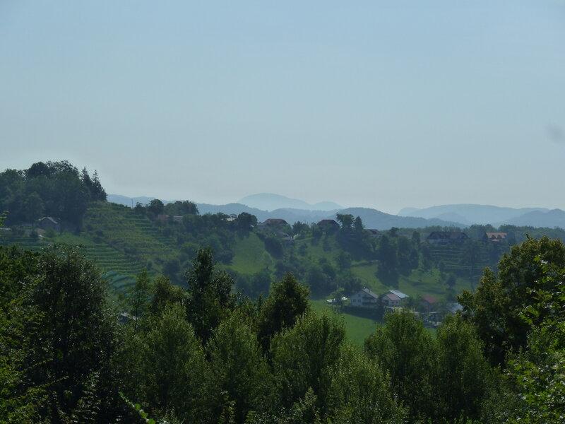 Типичный пейзаж - холмы, хутора и виноградники