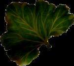 dus-intothedarkness-leaf1.png