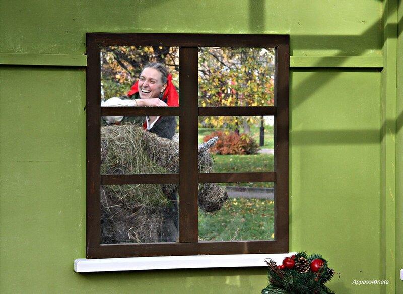 Окно в Баварию